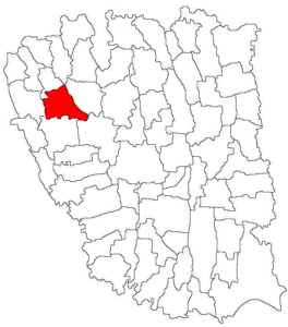 Munteni